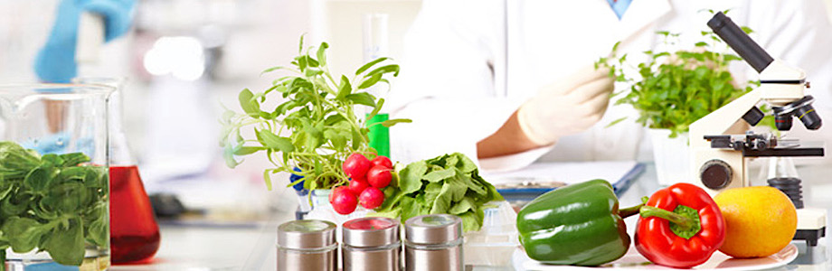 """<span class=""""entry-title-primary"""">Food Testing Market 